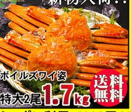 最高級ランクの「堅蟹」のズワイガニをご自宅で!|  楽天 通販 蟹(かに・カニ)口コミ